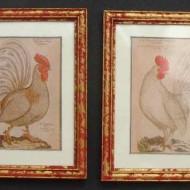 2 Cockrel prints