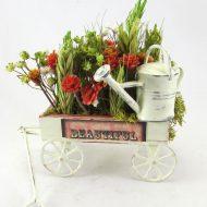 Texas cart-min