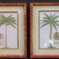 palms-min